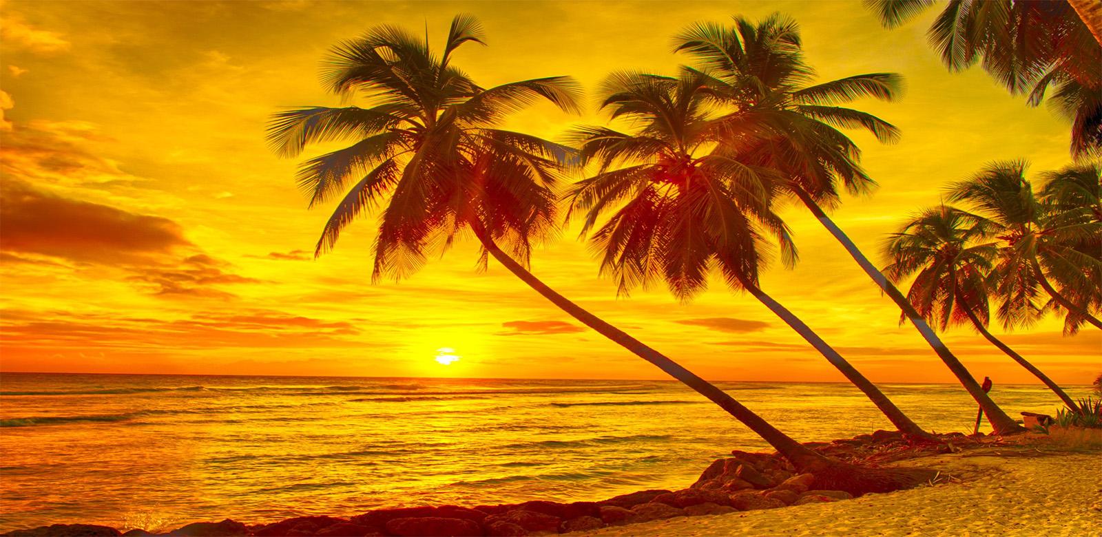 ชมพระอาทิตย์ตกบนชายหาด