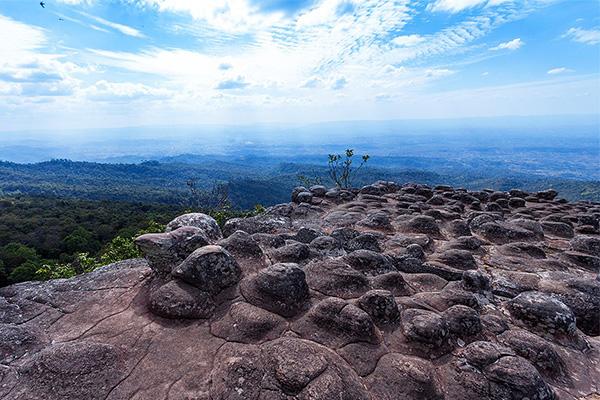 ลานหินปุ่ม ภูหินร่องกล้า